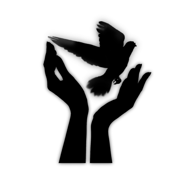 Black-and-white silhouette of two female hands releasing a dove.