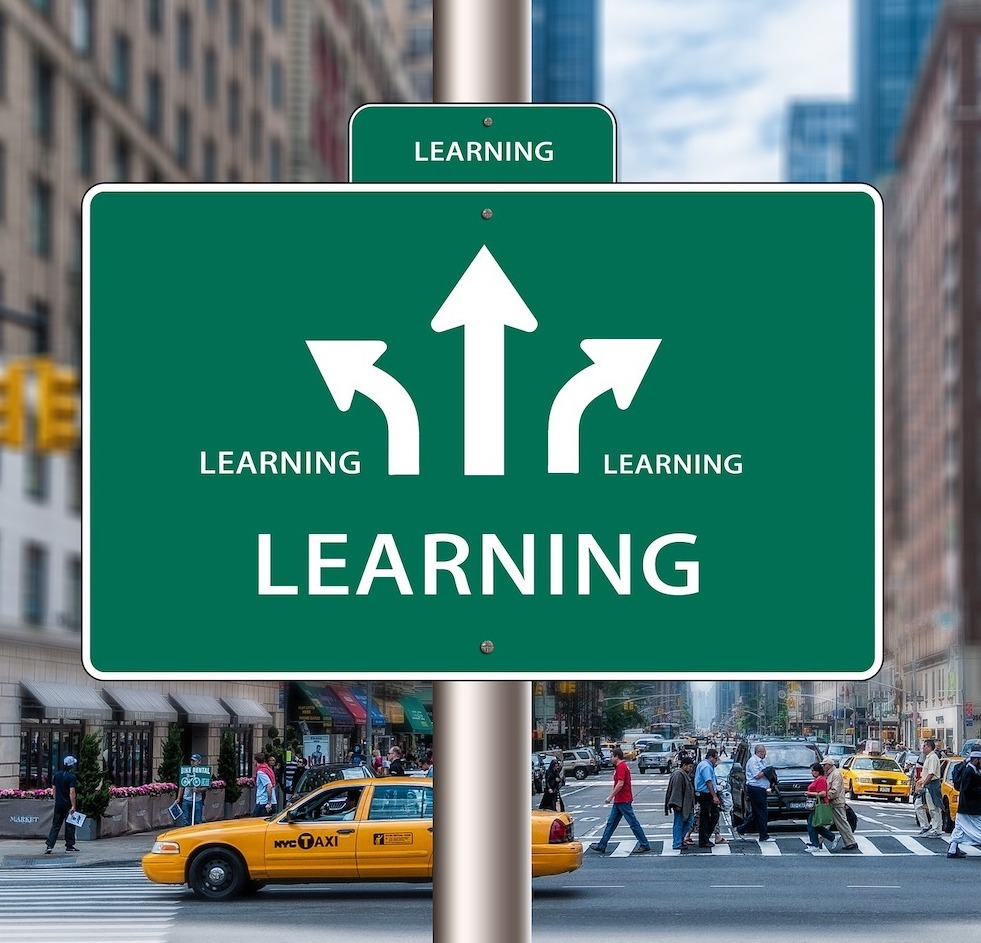 "A green street sign attached to a pole, depicting three white arrows pointing in different directions, with the word, ""Learning"" printed four times."