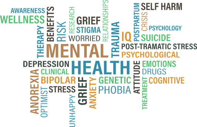 "The word ""mental health"" in capital letters with associated terms displayed in various colors and sizes."