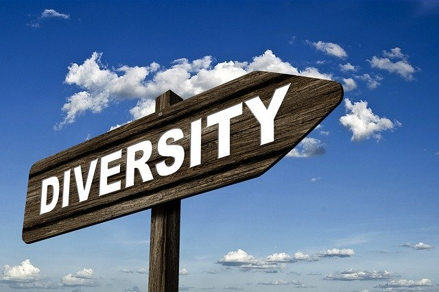 "A wooden sign with a word ""DIVERSITY"" written in white."