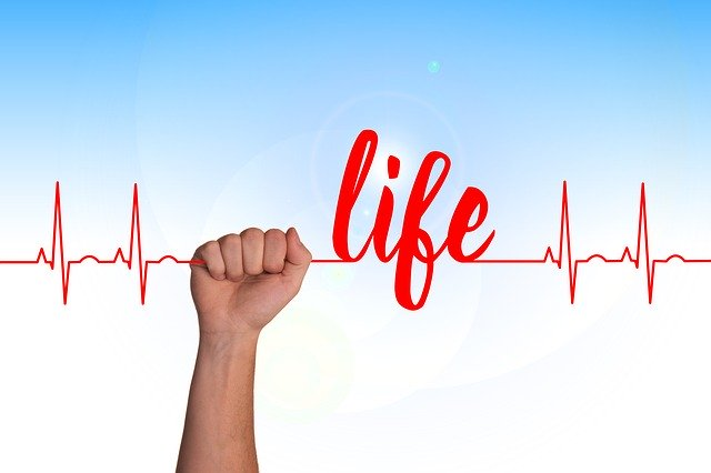 "A heart line with ""life"" written along the top in red and a hand holding the line."